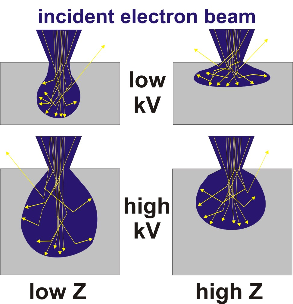3.2. Contrast Generation in the Electron Microscope Figure 8: Interaction volumes of the incident electron beam (blue) in compact samples (grey) depending on electron energy and atomic number Z.