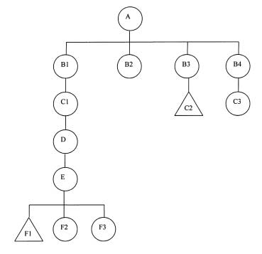 61 FIGURE 5. Reconstruction of the relationship between the ruling lineage of Amakom and the lineage of Bosompem Ketekye of Dompoase (IAS/AS 77).