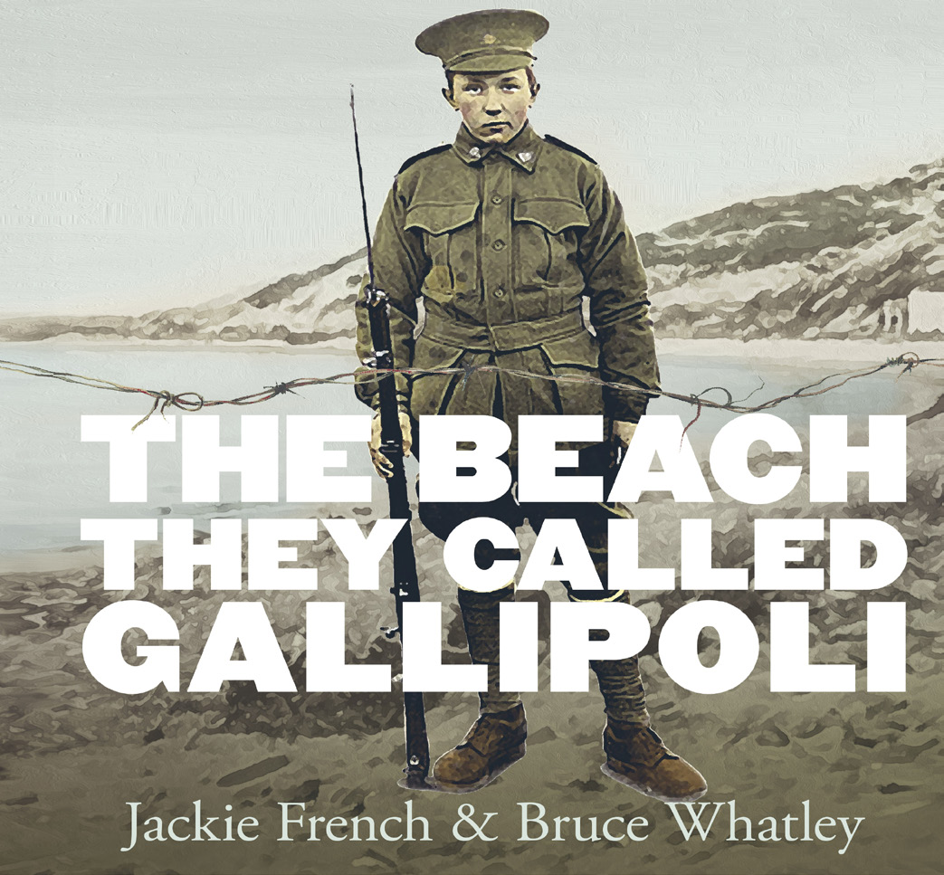 With beautiful and painterly illustrations by Bruce Whatley this is a book that explores the beach where the battles took place.