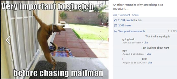 Dog Chases Mailman Cliché Haha Again, the humor that works on Facebook may be cliché, but it s a general audience. Has anyone not heard that dogs hate mailmen? And if you have one, you know it s true.
