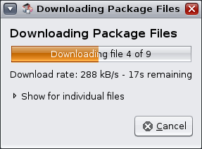 The package manager will show you a progress meter while it downloads