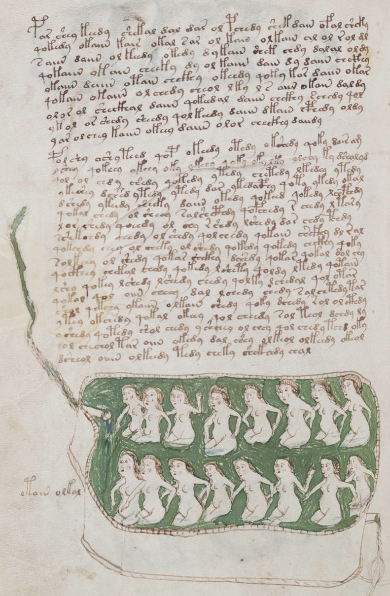 pages include text, and most are illustrated. The text was probably added after the illustrations, and shows no evidence of scratching or correction.