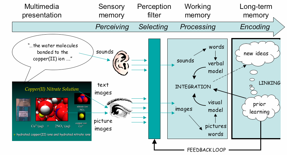R. Tasker and R. Dalton 148 Figure 9. A multimedia informationprocessing model for learning from audiovisual information.