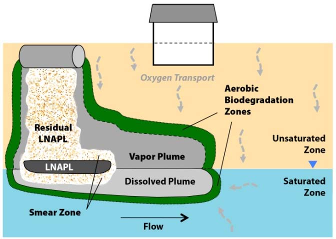 The aerobic biodegradability of PHCs can generally limit the potential for subsurface migration of petroleum vapors and PVI.