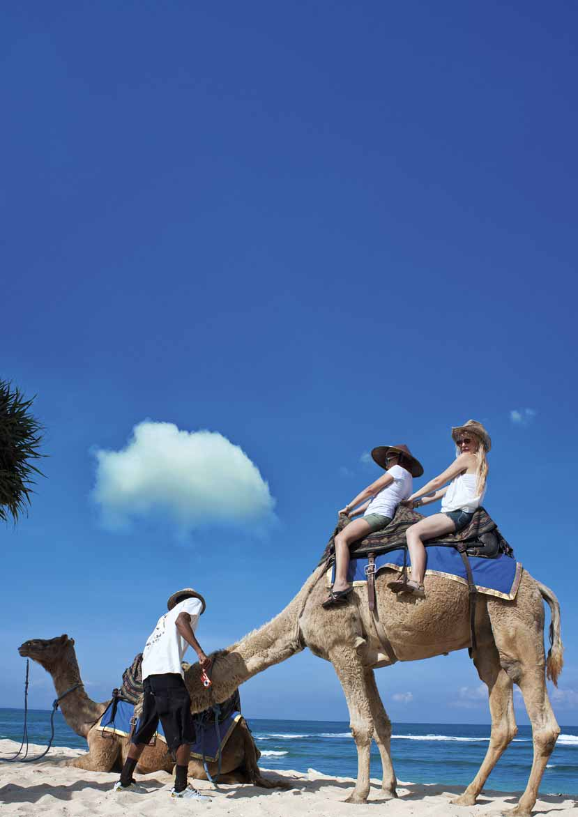 WHAT TO DO Camel Tours TEXT & PHOTO BY KARTIKA D. SUARDANA There is no golden desert in Bali. But we do have a golden sandy beach on the southern part of the island: the famous Nusa Dua beach.