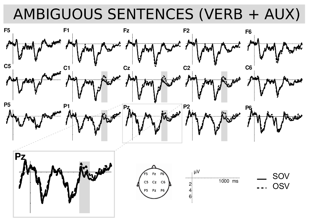 Figure 4: Ambiguous SOV (continued lines) and OSV (dashed lines) comparison at verb auxiliary position long while in the experiment with natives, Erdocia et al. (2009) used seven word long sentences.