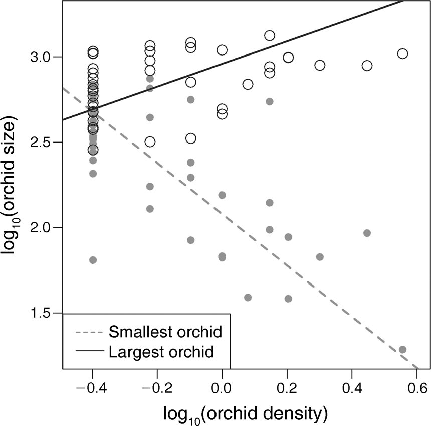 700 MELISSA WHITMAN AND JAMES D. ACKERMAN Ecology, Vol. 96, No. 3 FIG. 2. Plant size as a function of density for the largest and smallest co-occurring orchids per subplot.