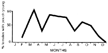 Similar peaks in breeding occur at the same time from year to year and in different localities.