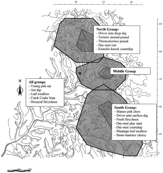 88 Evolutionary Anthropology ARTICLES Map 1: Cultural differences between three neighboring chimpanzee communities in the Taï forest. nest as a signal to attract sexually active females.