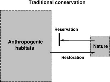 As diversity relaxes to satisfy the island equation, the first species to go will be the endemics, those species whose habitat gets entirely expropriated (Harte & Kinzig, 1997).