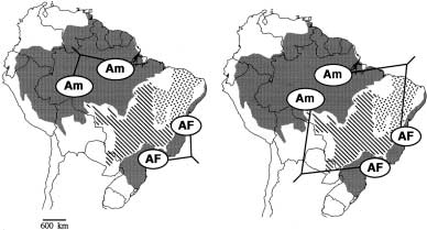 Phylogeography of Neotropical forest small mammals 73 Figure 1 Diagram showing the distribution of the Amazon (Am) and the Atlantic Forest (AF), the Cerrado (hatched) and the Caatinga (stippled).