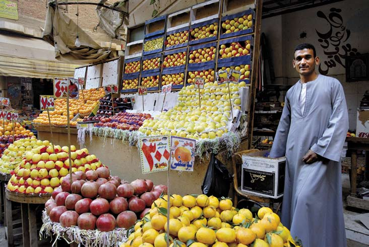 About Cairo and its Informal Areas Advantages of Living in Informal Areas Fruit shop in Ard al-lewa.