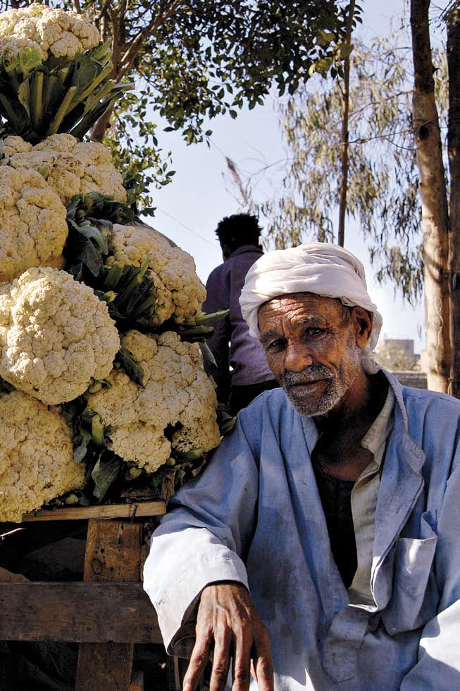 Expectations and Visions Cauliflower seller. Manshiet Nasser. Residents Voices: What if...? by JULIA GERLACH 194 What would you do if you where king, queen, or president for one day?