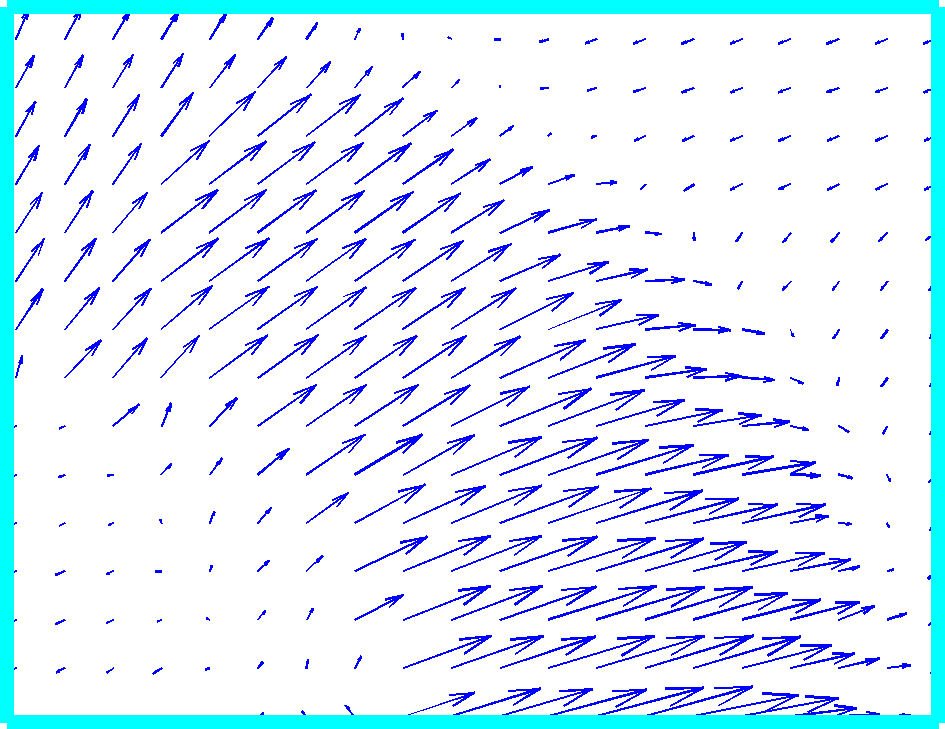 (c): a close-up of dense optical flow in the outlined area; (d): horizontal component d x of the displacement vector field (higher intensity corresponds to positive values, lower intensity