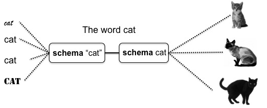 Figure 1. Words as bipolar constructions linking schematic representations in the domains of form and meaning.
