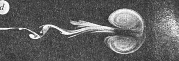 12 P. Tabeling / Physics Reports 362 (2002) 1 62 Fig. 7. An example of an averaged prole of a set of vortices, with negative vorticity, in a freely decaying system. Fig. 8.