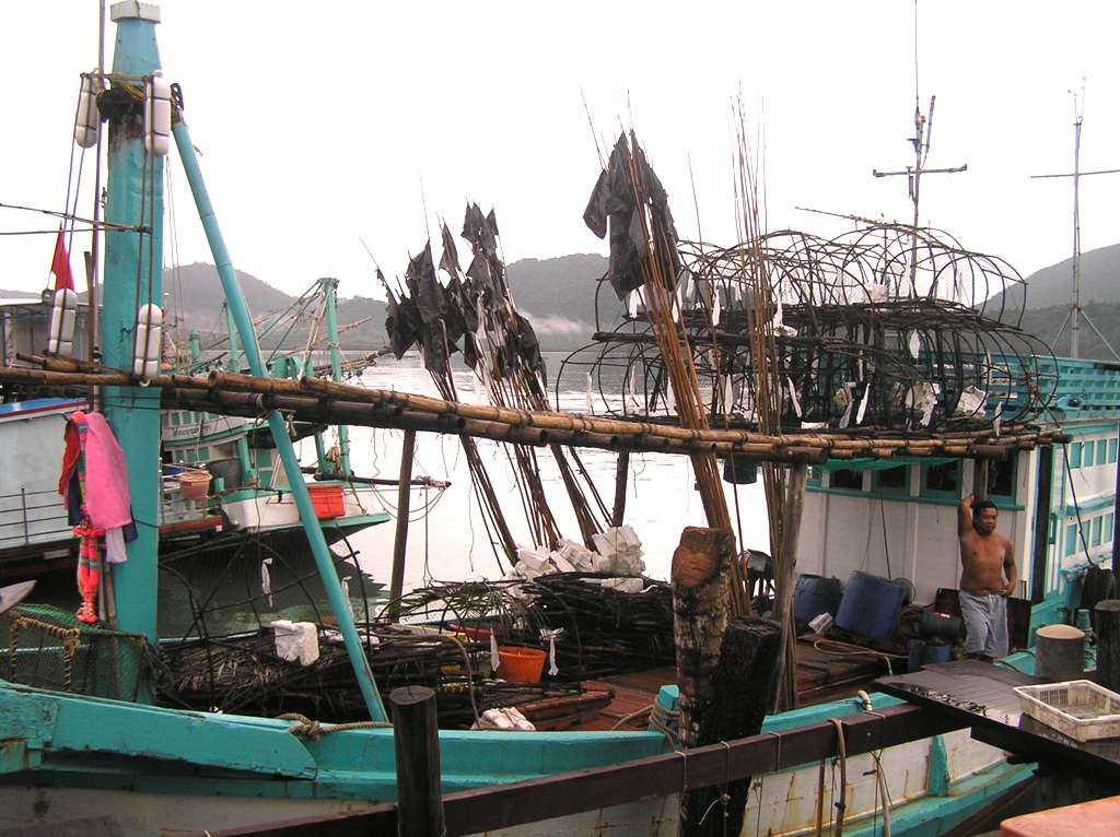 5. Sustainable livelihoods Training of alternative livelihood for illegal fishermen (e.g. mariculture).