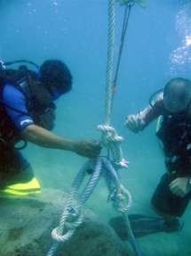 local diving operators, local fishermen, universities and