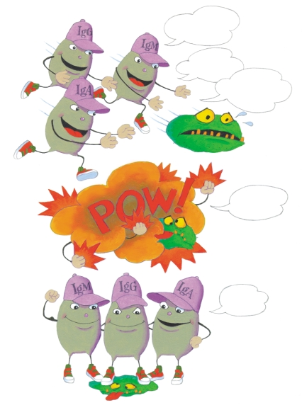 Sometimes the Igs help each other gang up on germs. Let s get him! I ll help you!