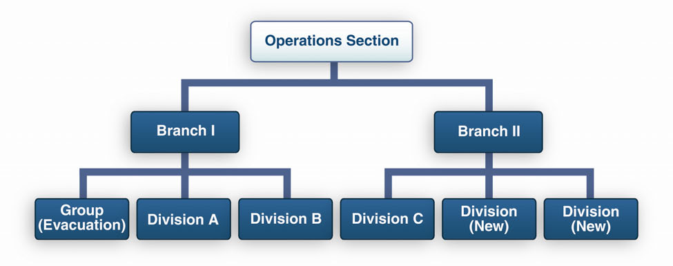 APPENDIX B: INCIDENT COMMAND SYSTEM example, if one Group and four Divisions are reporting to the Operations Section Chief, and two Divisions and one Group are to be added, a two-branch organization