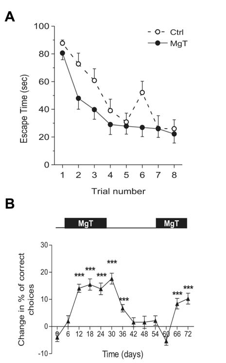 Mg in cognitive aging Chapter 6 Among the possible mechanisms affecting NMDA- R activation in aging, a role for Mg 2+ has been evaluated.