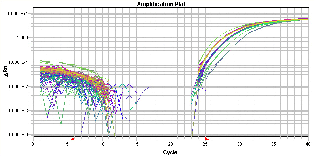 Baseline Set Too Low The amplification curve begins too far to the right of the maximum baseline.