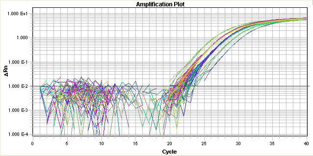 Chapter 5 Analyzing and Viewing RQ Study Data in RQ Manager 1.2 Analyzing RQ Study Data Threshold Set Correctly The threshold is set in the exponential phase of the amplification curve.