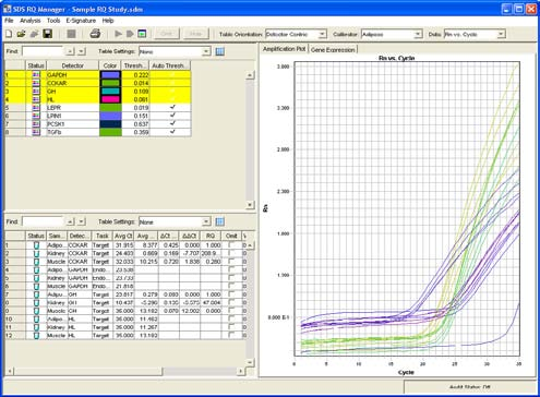 Chapter 5 Analyzing and Viewing RQ Study Data in RQ Manager 1.