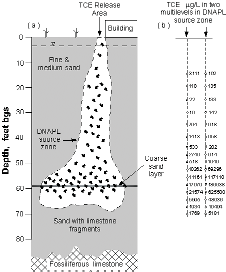 Detailed site characterization was done in February 2000 to facilitate the design of the permanganate solution injections for remediation of the DNAPL source zone.