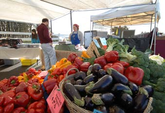 Summary, Areas of Risk, and Recommendations Farmers markets are growing rapidly.