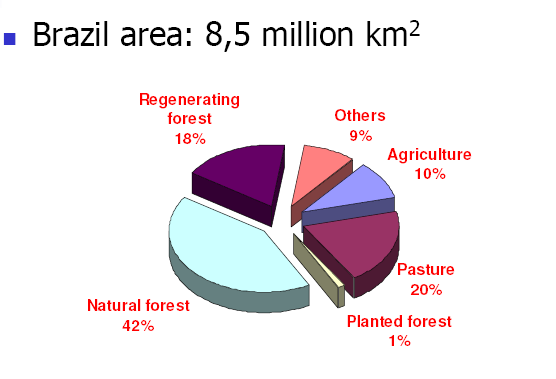 Brazil Current Forest Resource Brazil s tropical forests make up 42 percent of its total land area, and its plantations, 1 percent (Figure 10).