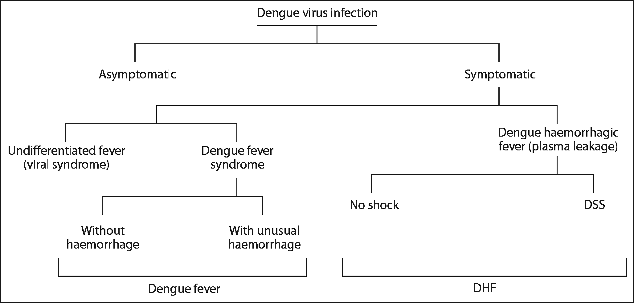 Fig. 1 : Clinical spectrum of dengue fever 6. on the skin surface on the forearm. In patients in shock, the test usually becomes positive if it is performed after recovery from shock.