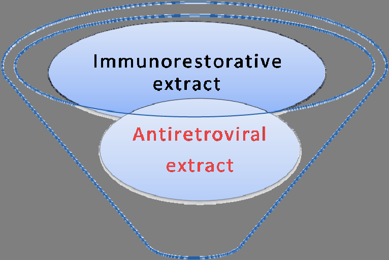 Figure 14. Functional approach of formulation of HIV/AIDS phytomedicine. The best formulation of phytomedicine must contain at least an immunorestorative extract and antiretroviral extract. Table 7.