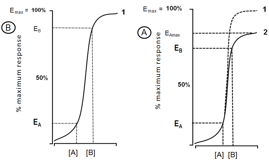 Figure 5: Plots of response to agonists acting at the same receptor: At left, a powerful full agonist (1) was not able to provoke 100% of response (E max in plot 1), but caused a partial response (E