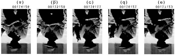 R. E. Núñez, E. Sweetser/Cognitive Science 30 (2006) 31 Fig. 11. Example of a pointing gesture opportunistically using the tip of a tool (a musical instrument).
