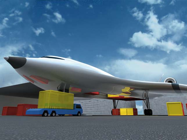 The airline airport This concept envisages that an airport could become sufficiently dominant in an area for it to embrace the role of flight services (the airline role) and operate as a through