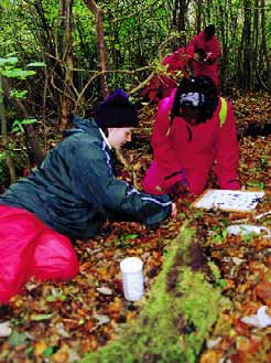 Real World Learning Partners Fantastic fieldwork The Field Studies Council (FSC) is a pioneering educational charity committed to bringing environmental understanding to all.