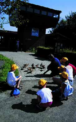 Pupils are able to explore nature all year round through the first-hand study of birds, other animals and plants.