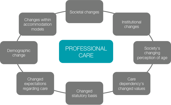Figure 12: Factors influencing professional care for the elderly (adapted from Engels et al., 2007 21 ).