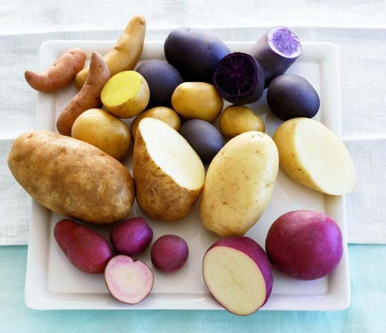 All about potatoes The potato is a member of the Solanaceae (nightshade) family, which includes tomato, pepper, eggplant, petunia and tobacco.