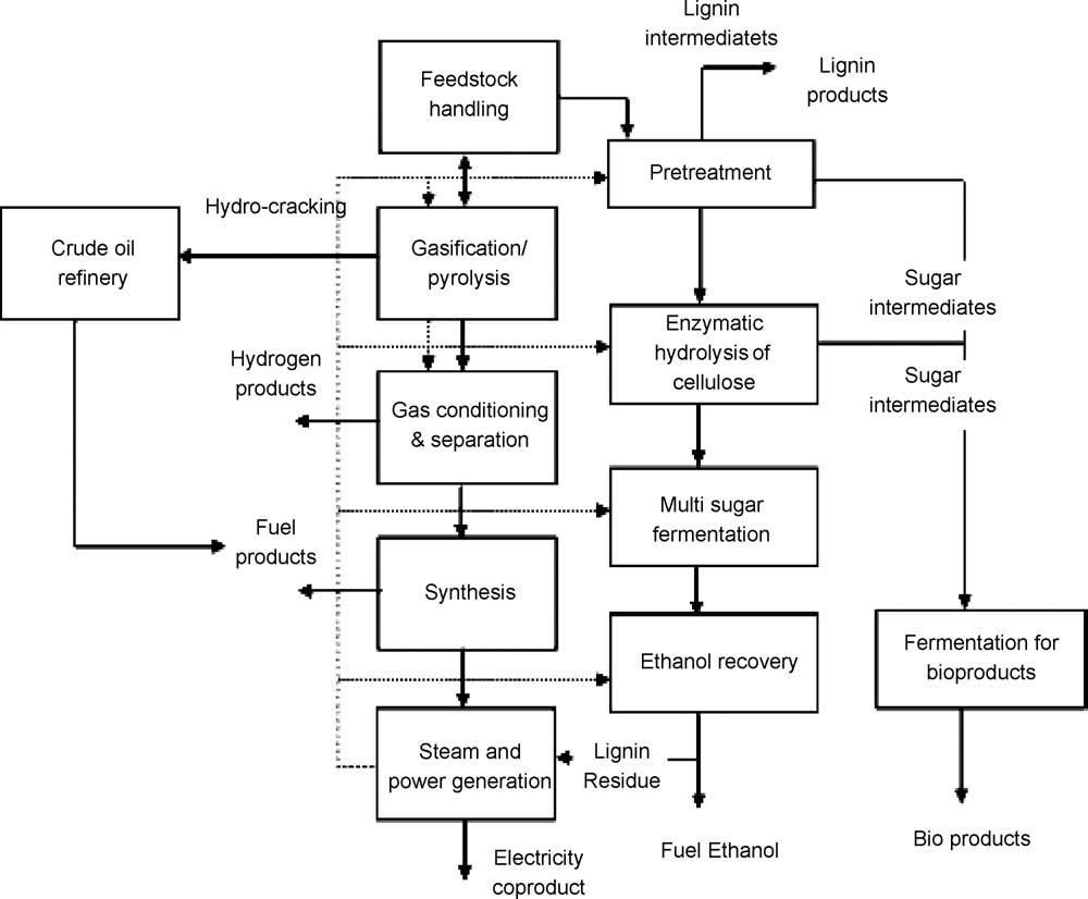 S.N. Naik et al. / Renewable and Sustainable Energy Reviews 14 (2010) 578 597 595 Fig. 19. Schematic of an integrated biorefinery.fernando et al. [12].