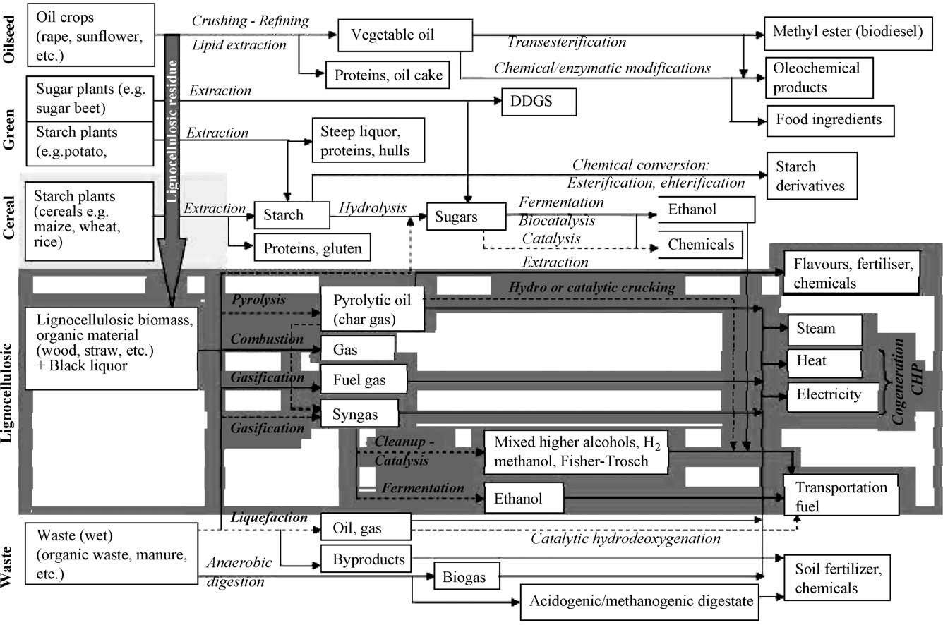 596 S.N. Naik et al. / Renewable and Sustainable Energy Reviews 14 (2010) 578 597 Fig. 20. Integrated biorefinery. www.biorefinery.euroview.eu [52].