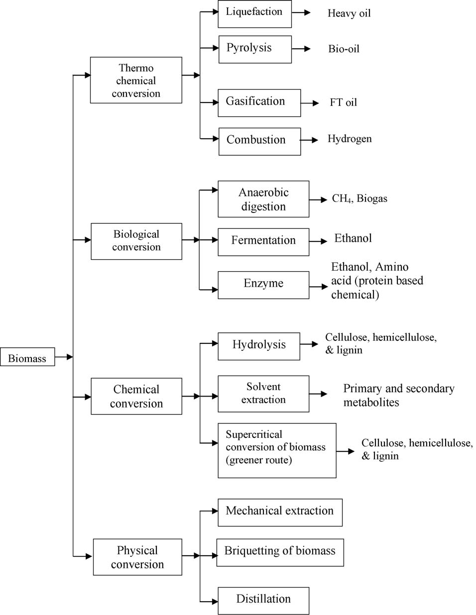 582 S.N. Naik et al. / Renewable and Sustainable Energy Reviews 14 (2010) 578 597 Fig. 3. Biomass conversion processes.