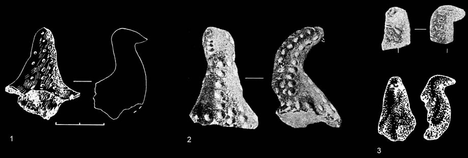 MARIUS IRŠENAS Anthropomorphic and Zoomorphic Stone Age Art in Lithuania, and its Archaeological Cultural Context Fig. 9. Zoomorphic clay figurines: 1 Žemaitiškė 2 (after Girininkas 1990, p.94, Fig.