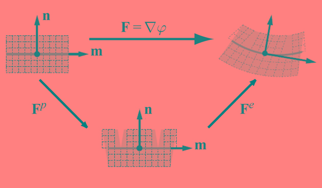 3.1 An intermediate dislocation-density based model on the µm-scale 105 (a) (b) Figure 66 - Geometric setting of multiplicative crystal plasticity.