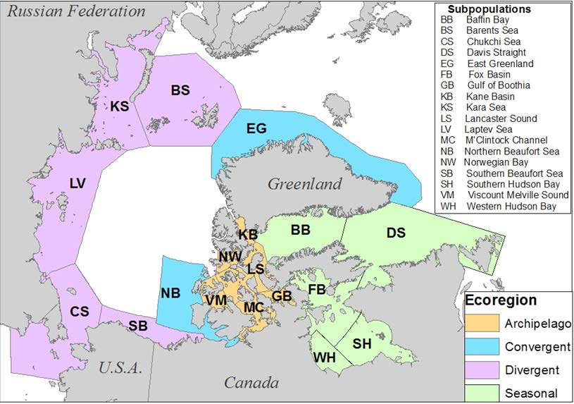Background AB Figure 2. Ice ecoregions (Amstrup et al. 2008). These ecoregions are equated with ESA recovery units in this Plan. sizes, and extended maternal investment in raising young.