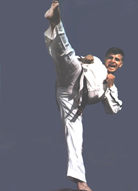 The points considered for such selection included the contribution to the development of Taekwondo in the country,