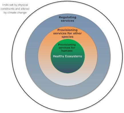 Section one - the challenge ahead, delivering wellbeing without undermining essential ecosystem services Introduction to the challenge Bioproductivity is the ability of ecosystems whether pristine or