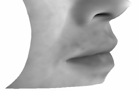 We therefore use several approximations to make the face representations computationally tractable.