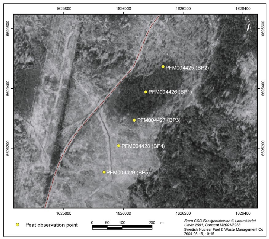 Figure 4-2. Localisation of the coring points at the peatland 500 m west of Lersättersmyran (TM 2).